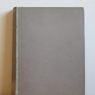 Johannes viator het boek van de liefde